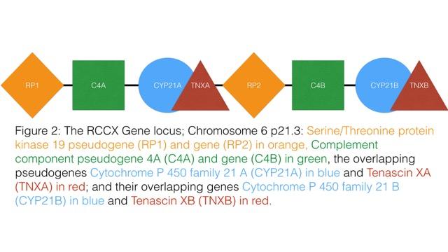 A Red Flag For Gene Based Chronic Disease Cluster