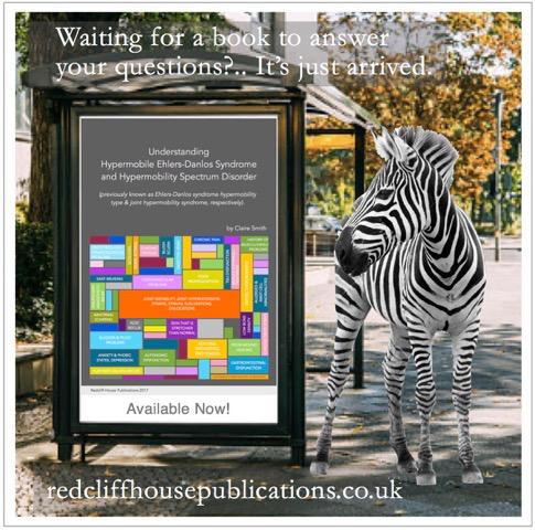 Boek EDS HSD met zebra 2.jpeg