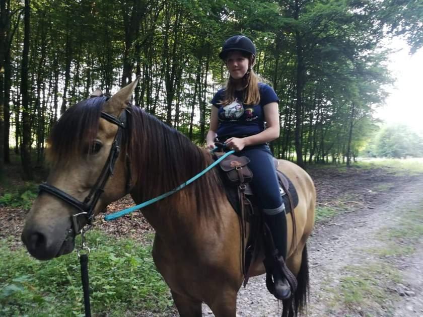 Myrddin op paard