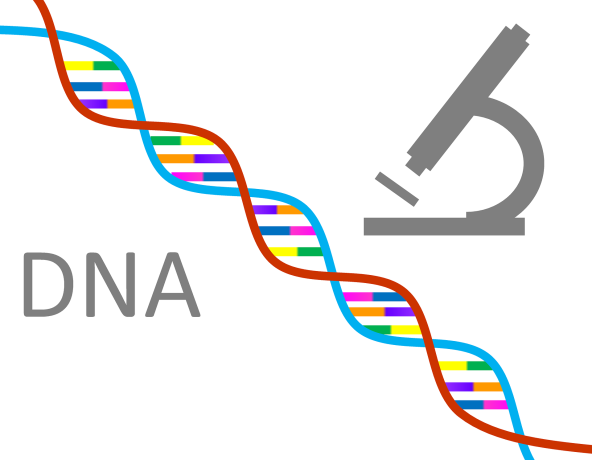 dna-1020670_1920.png