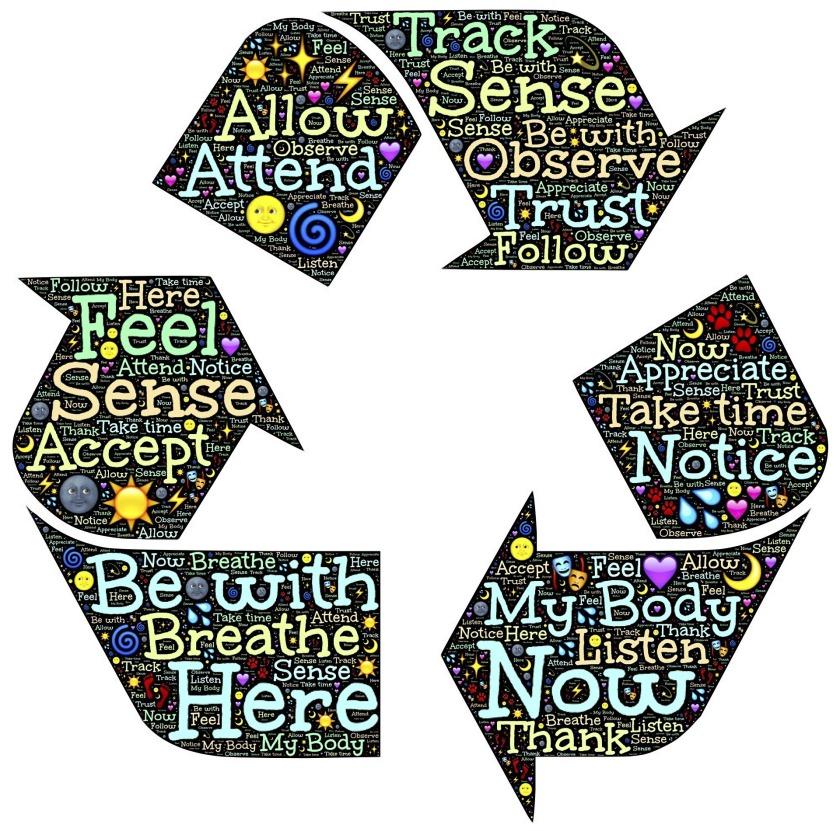 recycle-Diana van Halen